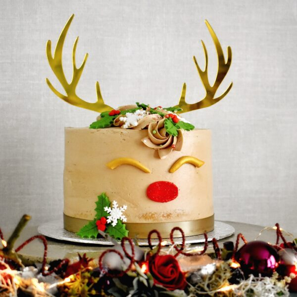 glutenvrije-rudolph-taart